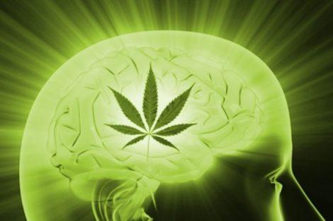 Riesgo de trastornos psiquiátricos por consumo de marihuana. Estudio prospectivo